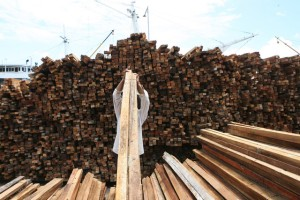 Timber piled in Jakarta's Sunda Kelapa Port illustrates the quantities of wood flowing out of Indonesia each year, prompting questions of illegal logging and mismanagement of the forest industry. (Dimas Ardian/Bloomberg)