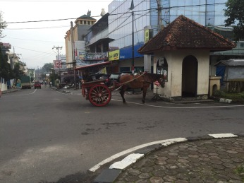 Horse carts, called delman, cikar, dokar, or andong depending on the area, are still a common sight in both city roads and country lanes.